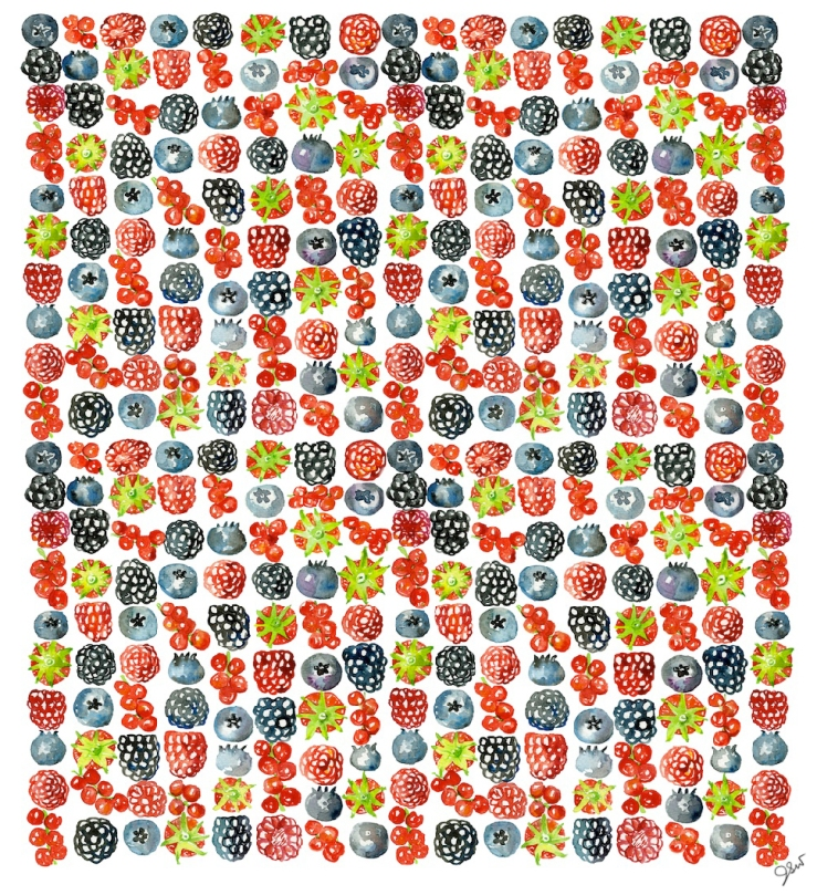 Jessie Kanelos Weiner_berry wallpaper copy