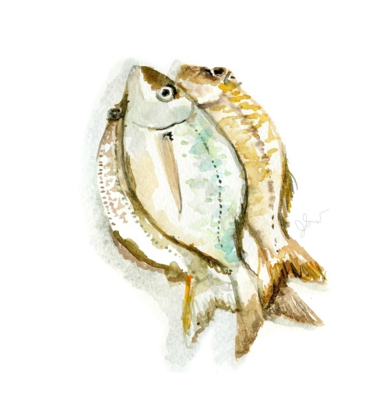 Jessie Kanelos Weiner_Essaouira fish_thefrancofly.com
