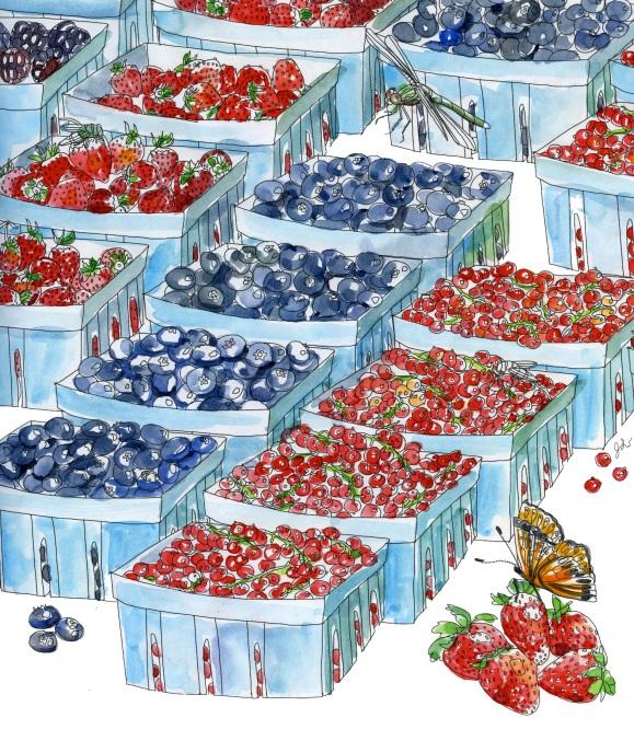 berries317 copy